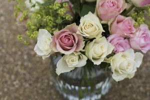 roses-celebration